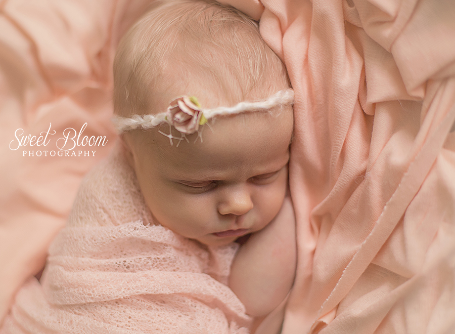 Springboro Ohio Newborn Photographer | Sweet Bloom Photography | www.sweetbloomphotography.com