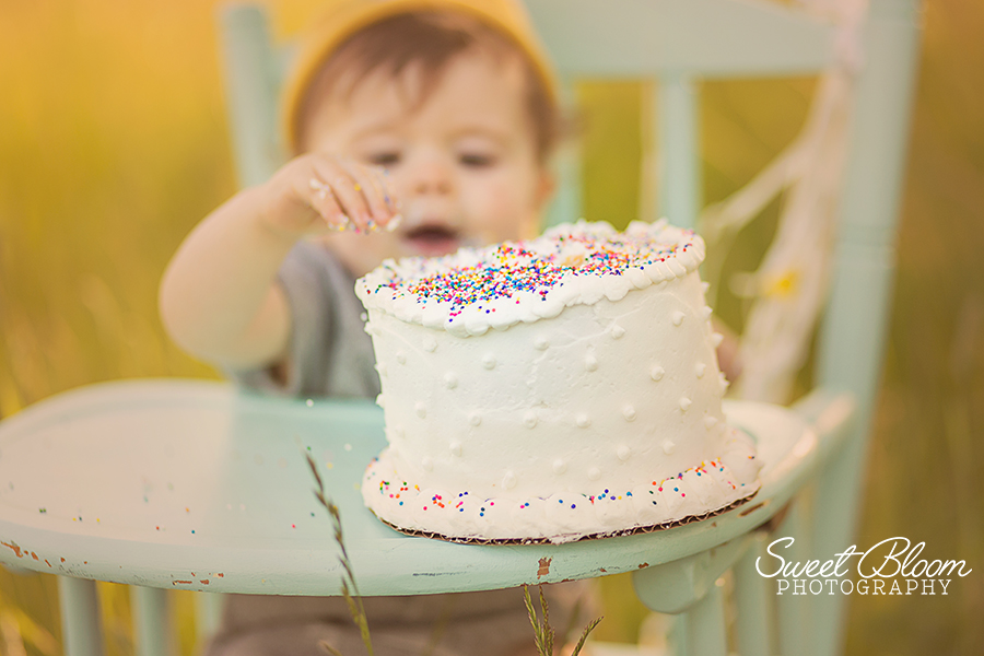 Dayton Ohio Birthday Cake Smash Session | Sweet Bloom Photography | www.sweetbloomphotography.com