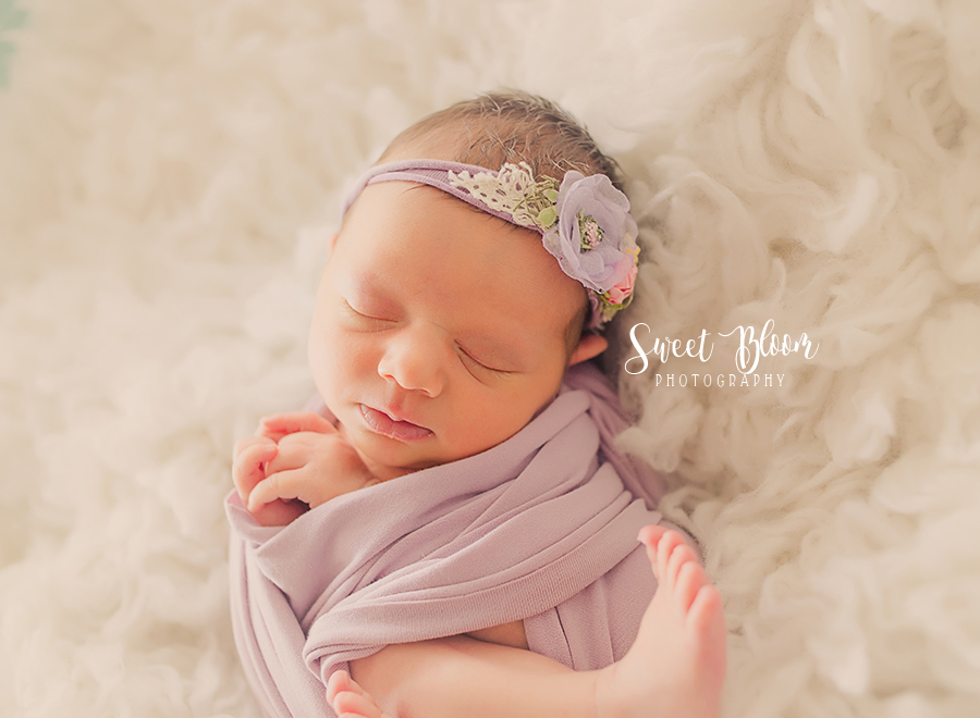 Newborn Photographer in Dayton Ohio | Sweet Bloom Photography | www.sweetbloomphotography.com