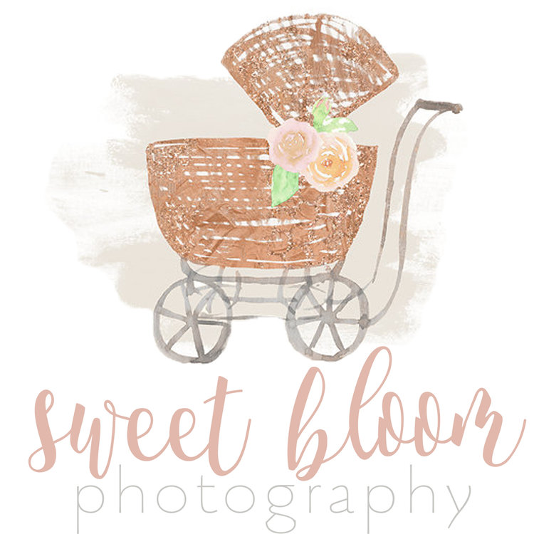 Newborn Photographer in Dayton Ohio Sweet Bloom Photography