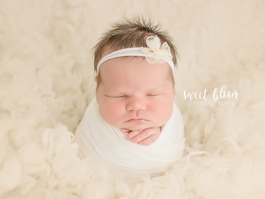 Lexington ky newborn photographer studio jpg