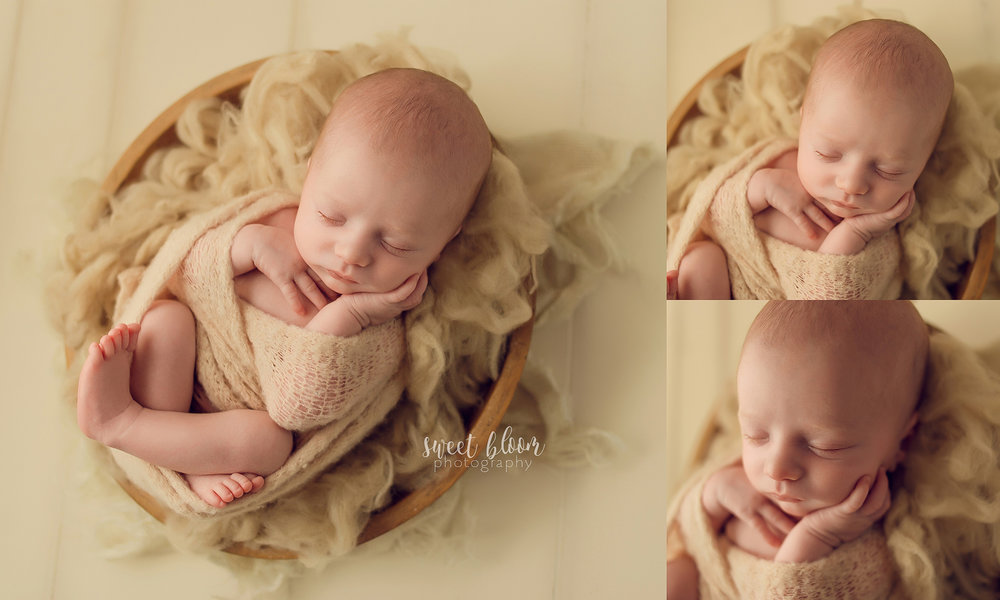 Newborn Photographer in Lexington KY