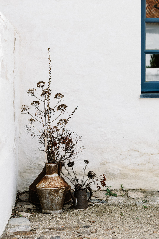 Corner vase.jpg