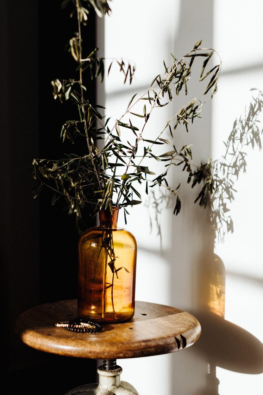amber shadow.jpg