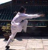 Wudang Dragon Form Seminar in Lomita CA 2008 d