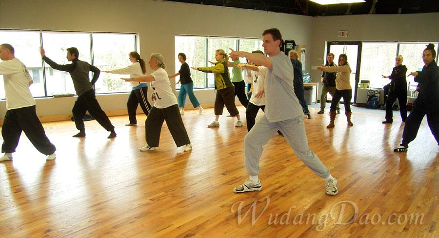 April 12-13, 2008. Wudang 5 Animal QiGong Seminar, in New York 3