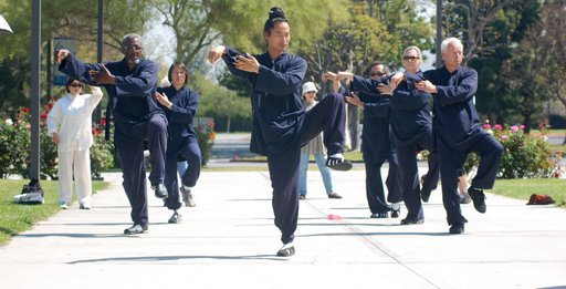 April 2008 World Chi Gong Tai Chi Day5