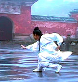 Wudang Taming Tiger Form Seminar in St. Louis 2