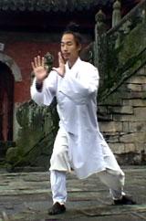 April 12-13, 2008. Wudang 5 Animal QiGong Seminar in New York 1