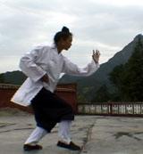 Wudang Xuan Wu Quan1