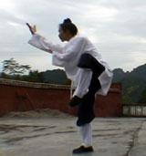 Wudang Xuan Wu Quan2