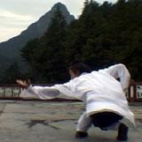 Wudang Xuan Wu Quan3