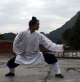 Wudang Xuan Wu Quan4