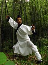 Wudang TaiYi WuXing Quan2