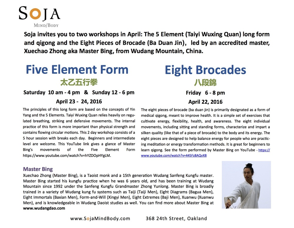 Five Element Form Seminar