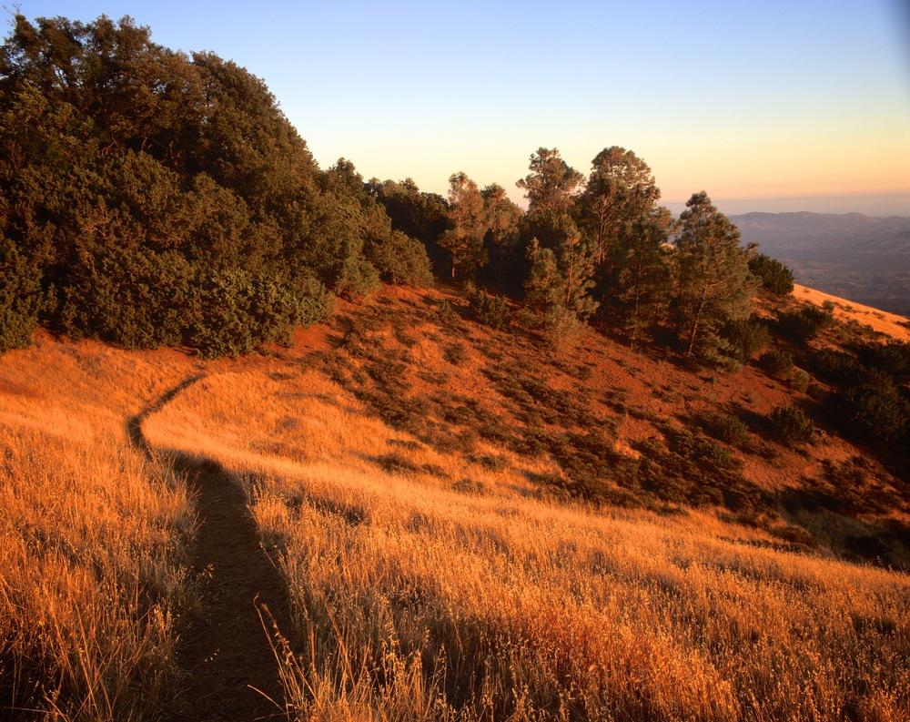 Path to Juniper Campground