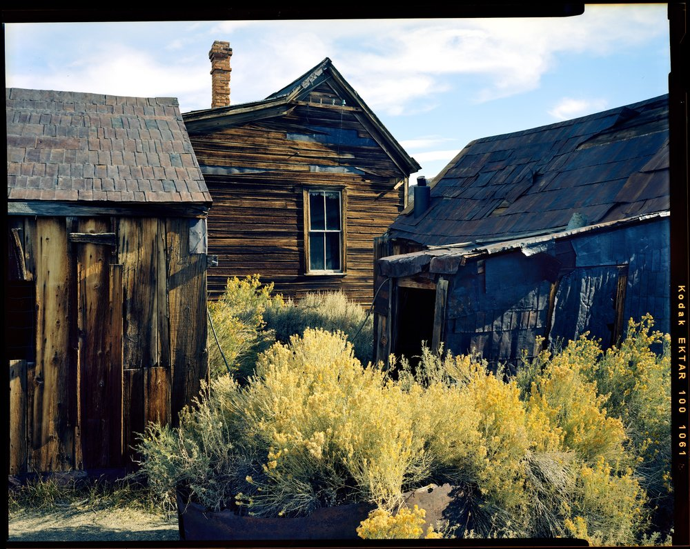 Bodie with Mustard, 2017. Nagaoka 4x5 + Fujinon 125mm f/5.6 W. I scouted the day prior and fell in love with this composition. This is a self processed frame done with a powder based kit, specifically from the first batch. The color shifting was not too bad and easily usable. Take note of the very blue shadows. If I had gone to a lab for this I am sure it would have more pop.