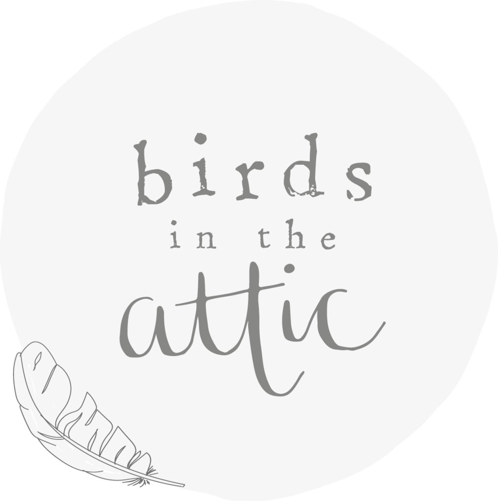 Birds in the Attic