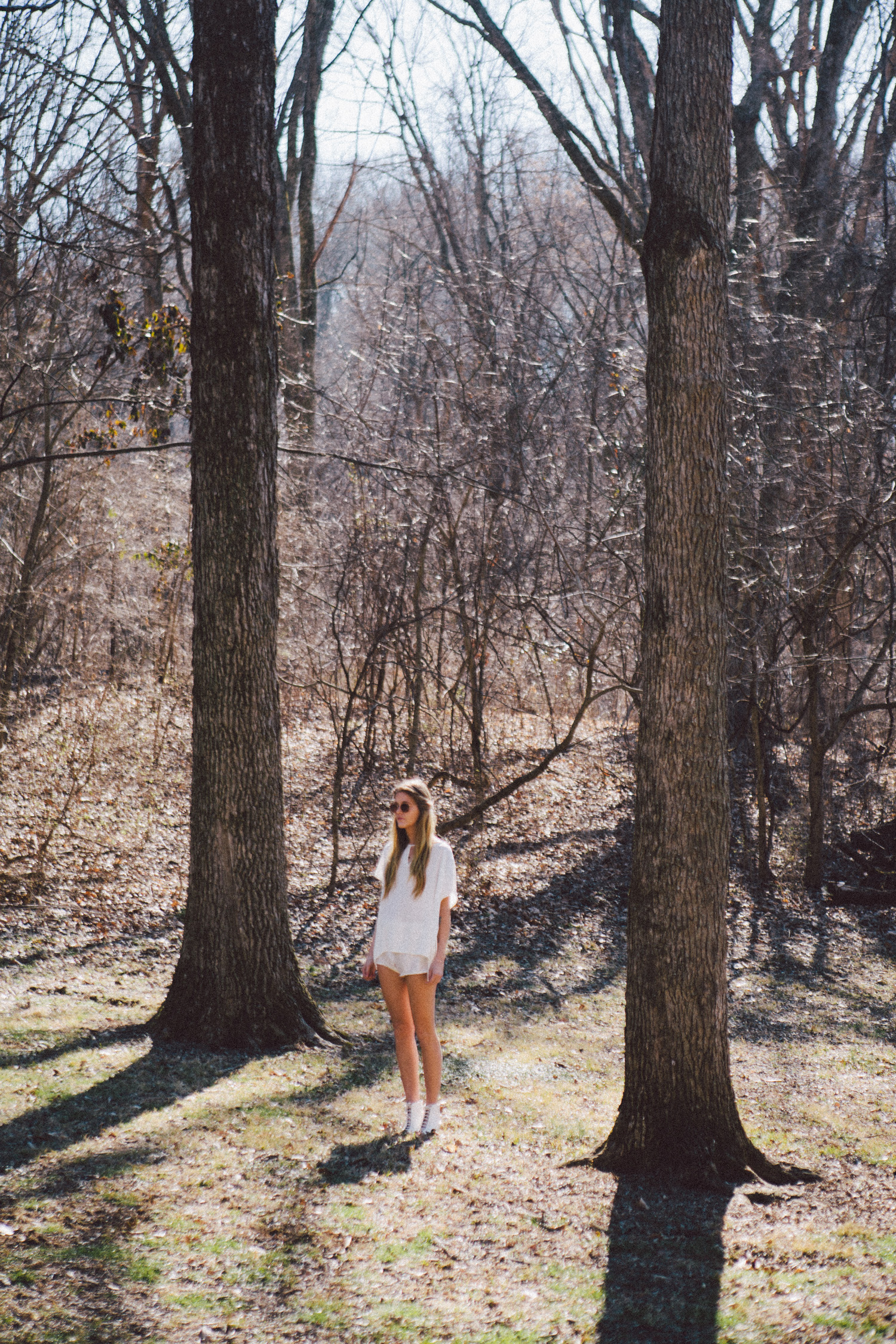 hallow pine | velvet moon