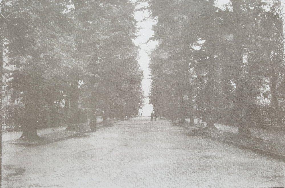 Venitian Park