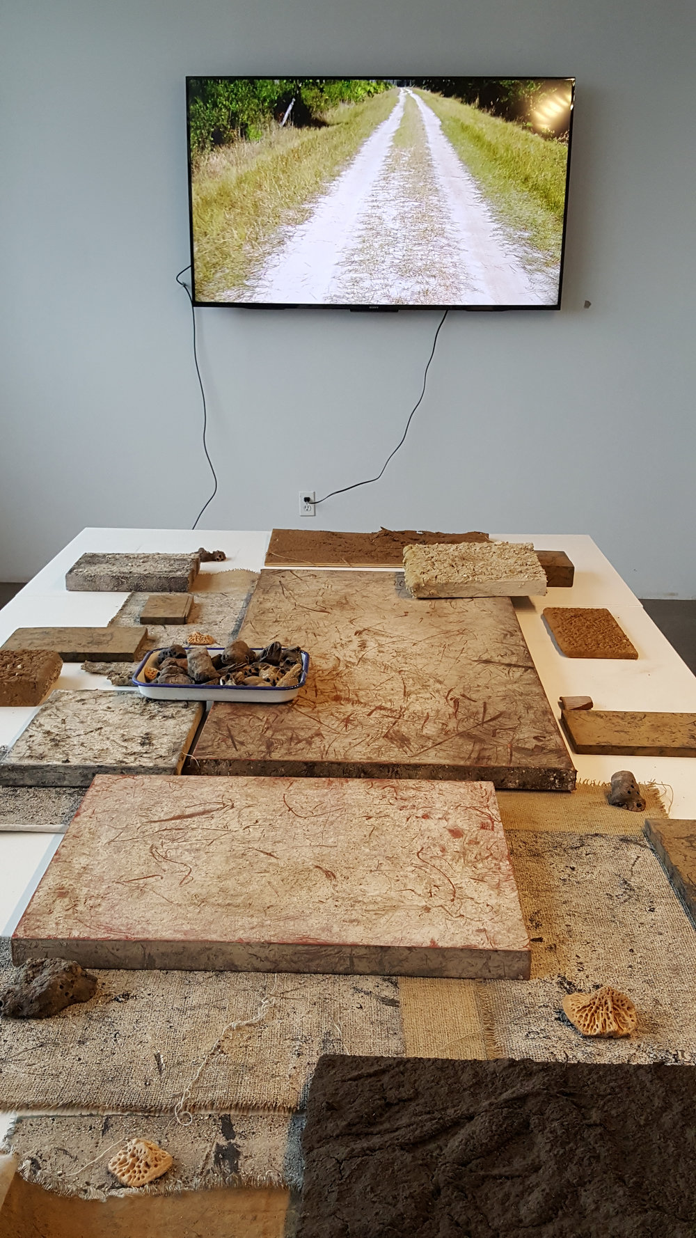 Experimental Installation - Video, Sound, Assemblage, Found Objects