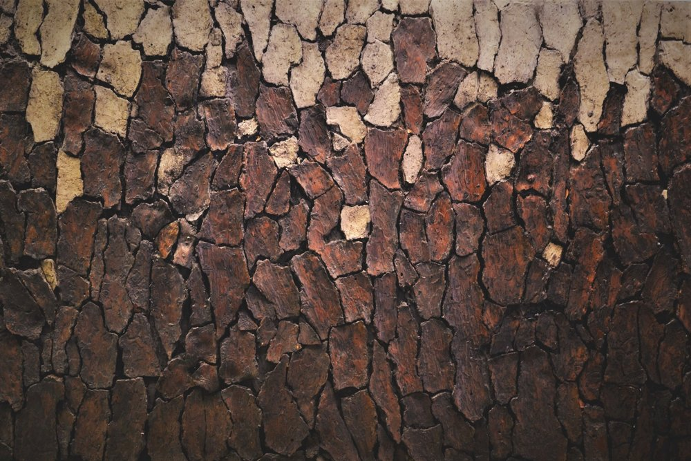 "Mark 2    48"" x 72""  Bark on wood panel"