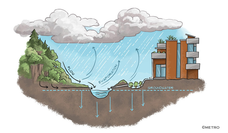 Stormwater Maintenance