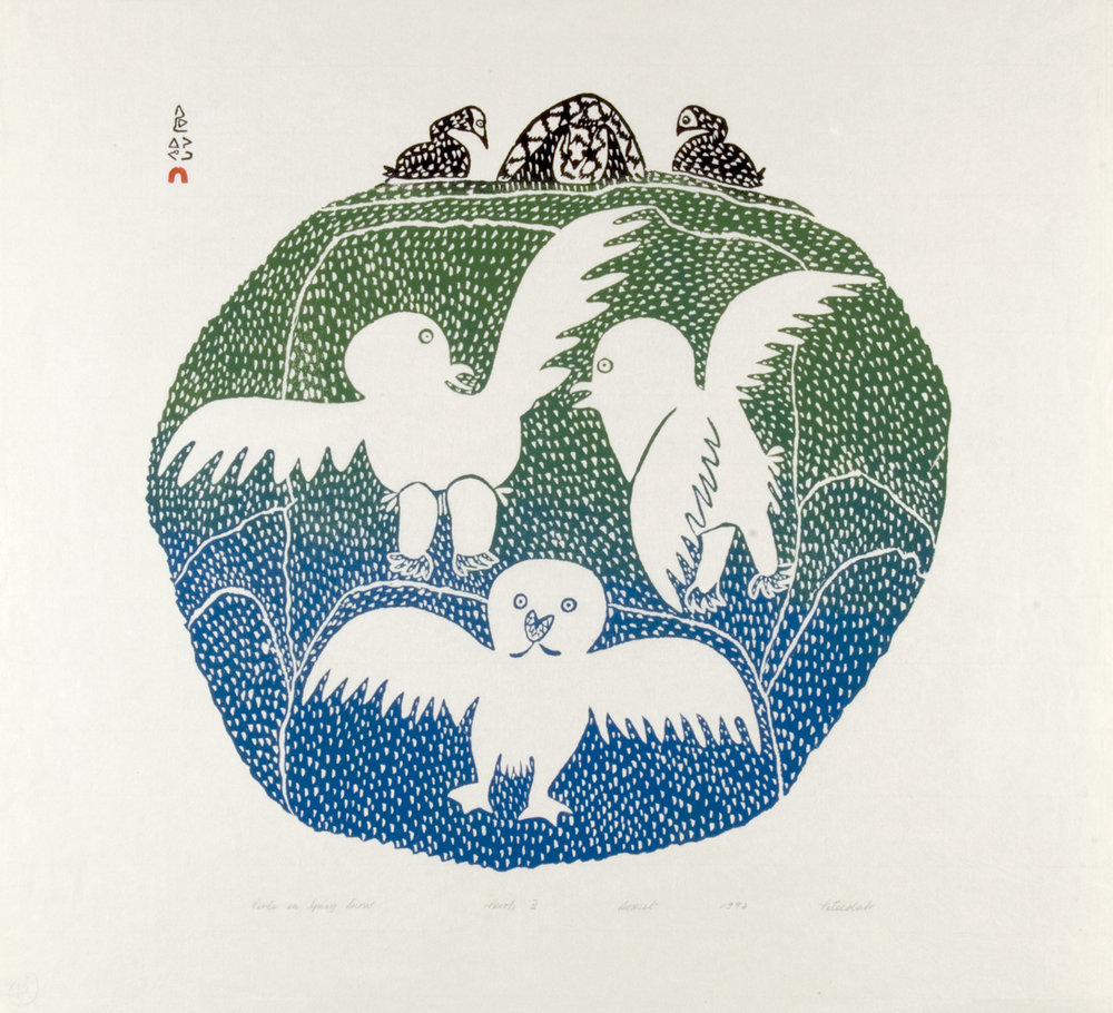 Pitseolak Ashoona 72-32 Owl in Spring Snow, 1972 Stonecut 22 1/4 x 24 1/2 in