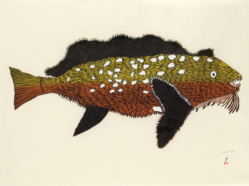 Papiara Tukiki KANAJURUPALLIAJUQ (TURNING INTO SCULPIN) Stonecut & Stencil   2013 43.3 x 62 cm $500.00 CDN Released in the 2013 collection Dorset ID#: 13-20