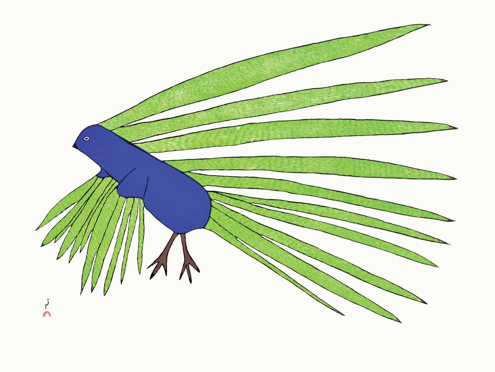 KAKULU SAGGIAKTOK Green Feathers Stonecut 2016 47.3 x 61.8 cm $ 550 Dorset ID#: 16-26