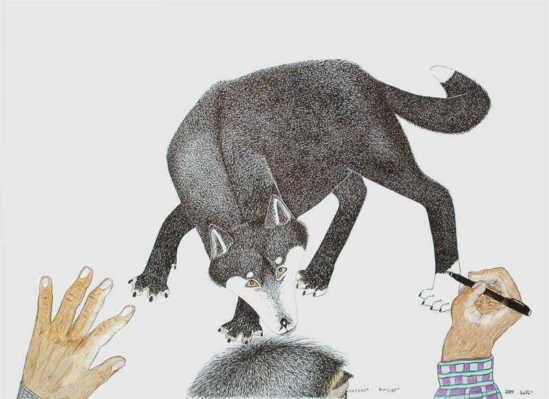 Untitled (Self-Portrait of Kanaginak Drawing a Wolf) 2009, ink and coloured pencil on paper