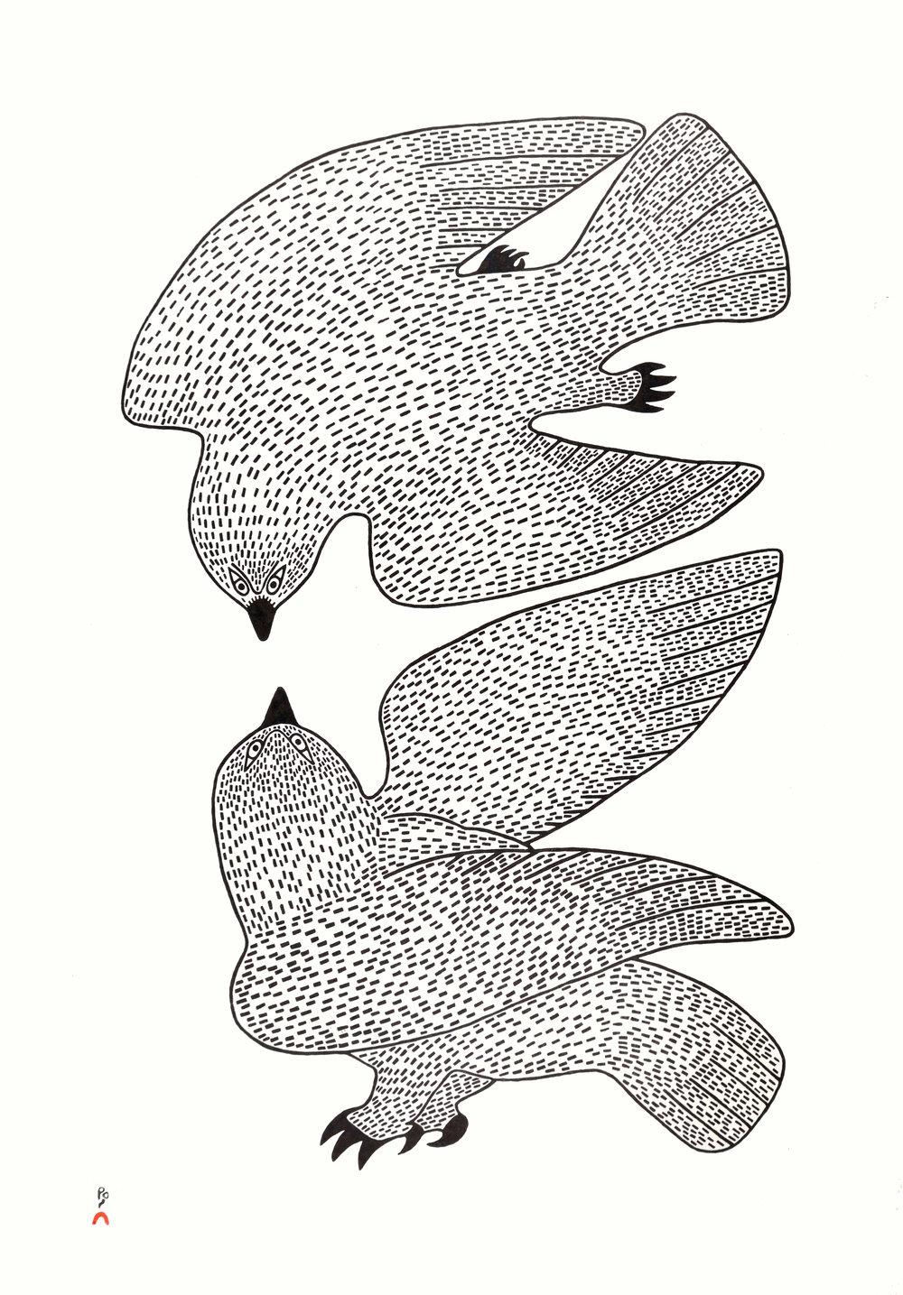 Sparring Owls, 2017 Stonecut Paper: Torinoko Kozo White Printer: Qiatsuq Niviaqsi 68.8 x 48.6 cm