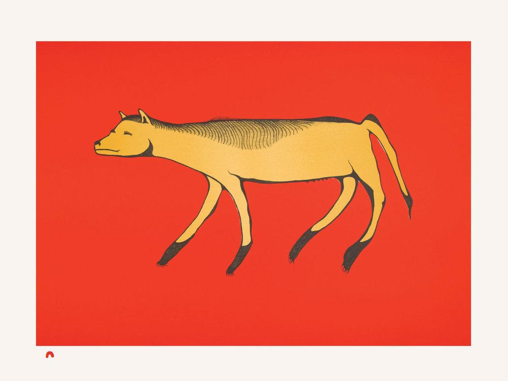 PITALOOSIE SAILA   Arctic Vixen , 2015  Lithograph  57 x 76.4 cm  $700  Dorset ID#18-23
