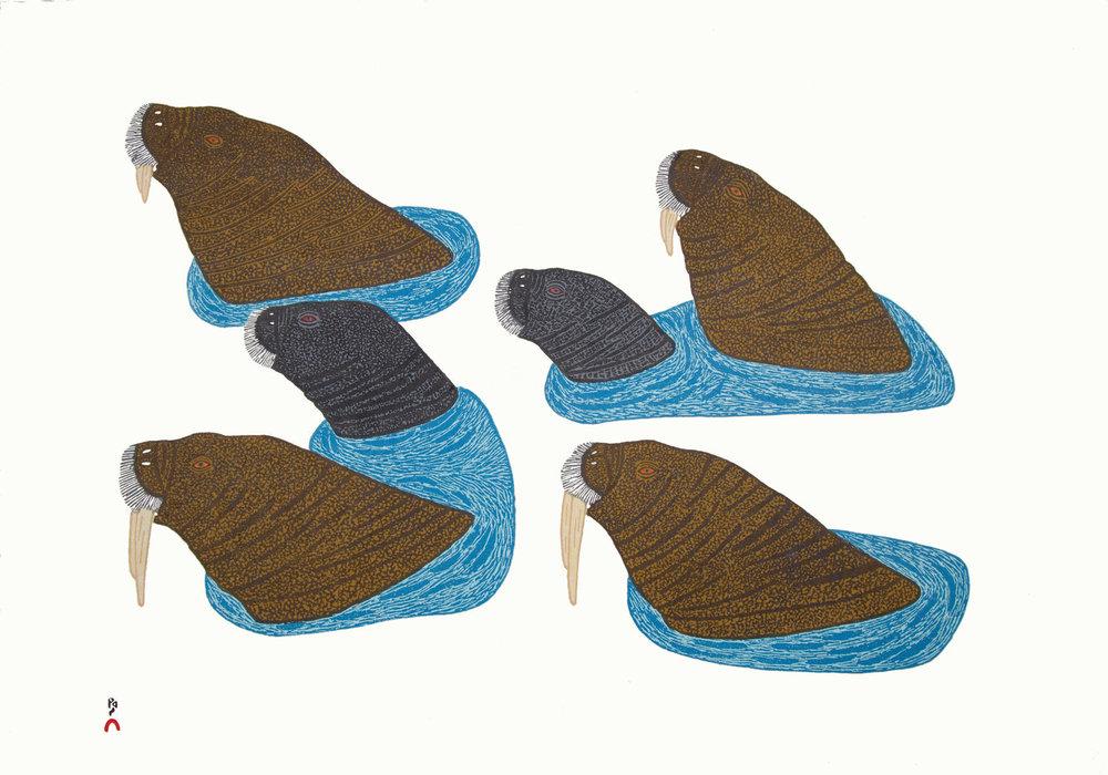 PAUOJOUNGIE SAGGIAK  12.  Uutuit  (Walruses on Top of Ice)  Stonecut  49 x 68.5 cm  $700  Dorset ID# 18-12