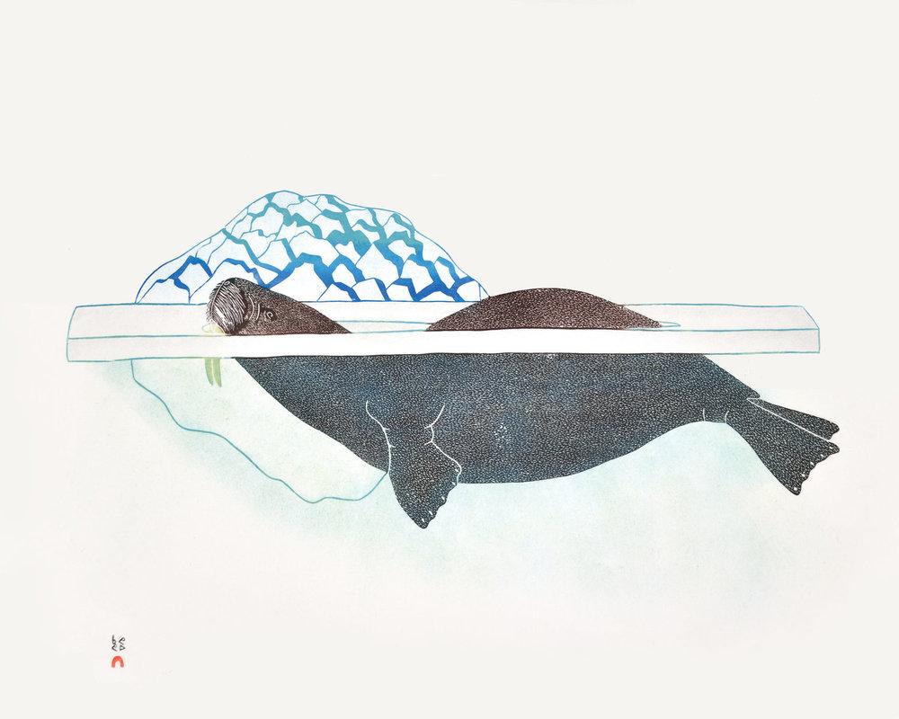 Kananginak Pootoogook  Walrus in Pressure Ice, 1989  Stonecut and Stencil  62 x 77 cm  $1200  Dorset ID#18S-02
