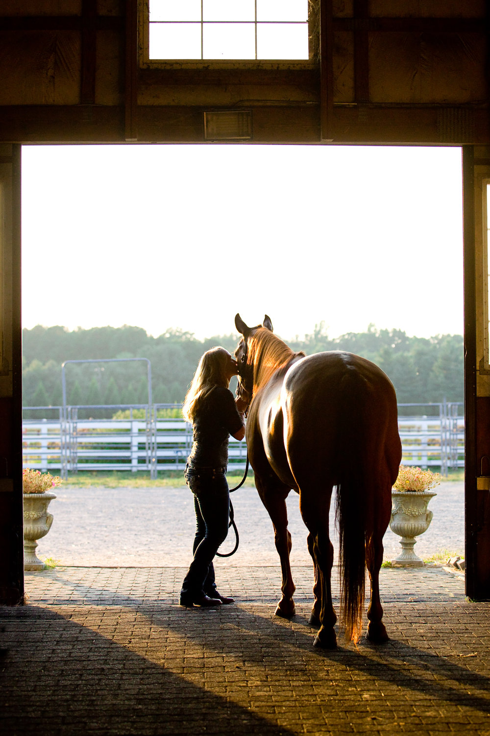bethanygracephoto-equine-photography-maryland-virginia-31.JPG