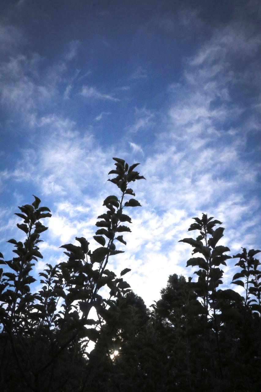 Sky Shadows - Holli Z Photography - 1.jpg