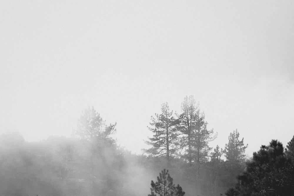 Descent- Holli Z Photography - 1.jpg