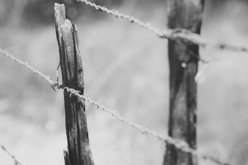 Sharp Edges - Holli Z Photography - 1.jpg