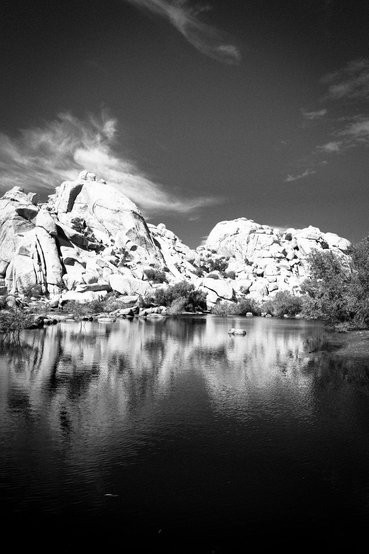 Black Mirror - Holli Z Photography - 1.jpg
