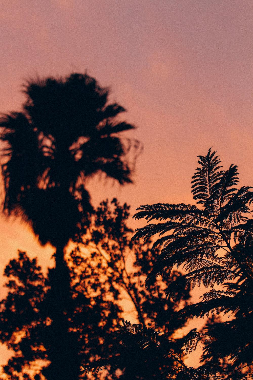 Forgotten Sunset - Holli Z Photography - 1.jpg