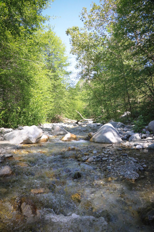 Creekside Posts - 10.jpg