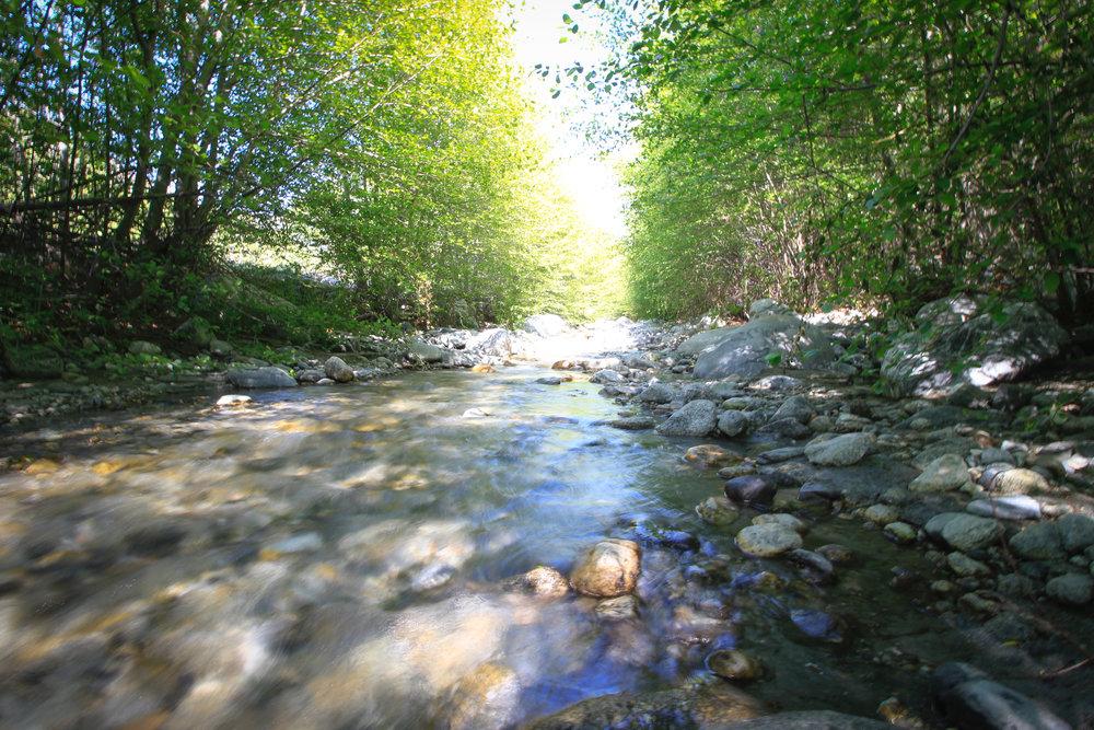 Creekside Posts - 14.jpg