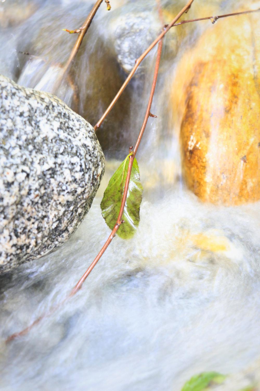 Creekside Posts - 15.jpg