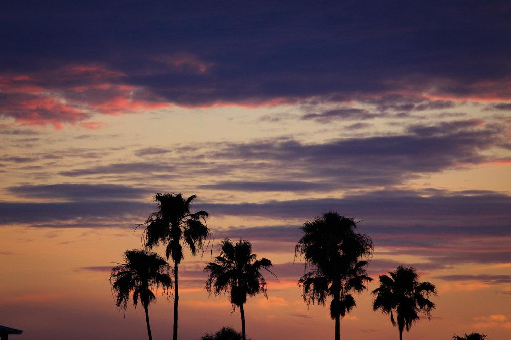 Skyline - Holli Z Photography - 1.jpg