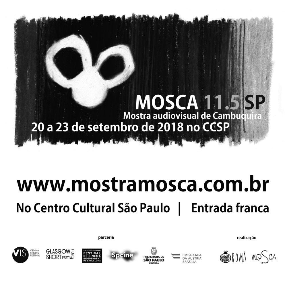 MOSCA_11-5_SAO PAULO P.jpg