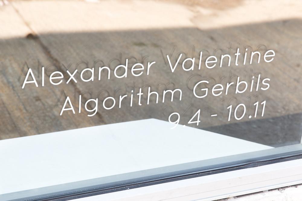 15b1e54e685a516a-Algorithm_Gerbils_Show-27.jpg