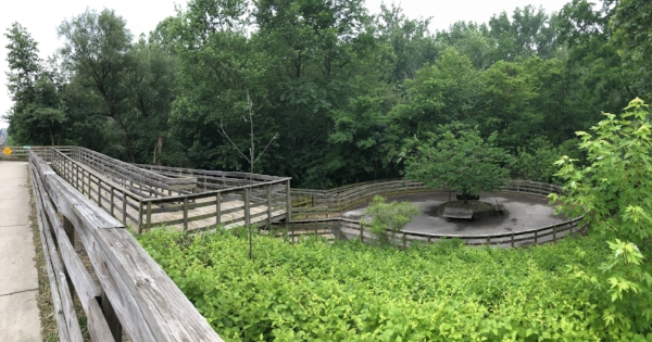 "Cool ""wooden coaster"" boardwalk!"