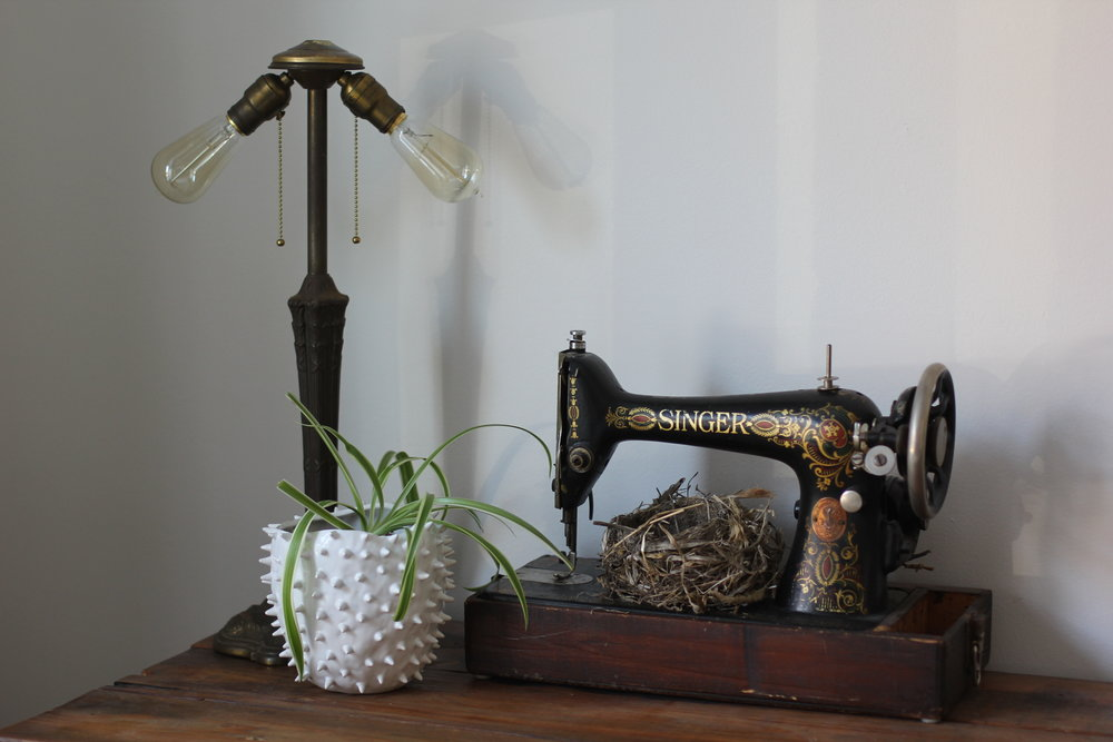 vintage sewing machine with a potted plant on a wood desk