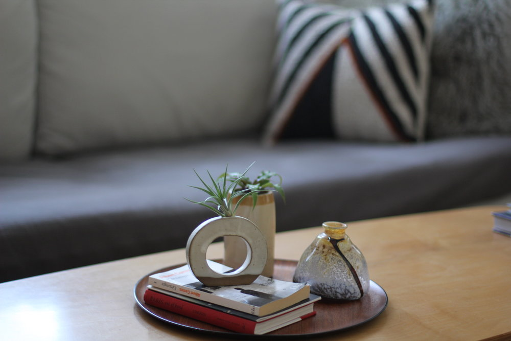 coffee table decor with succulents and coffee table books